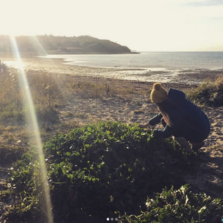 Foraging on the Isle of Wight