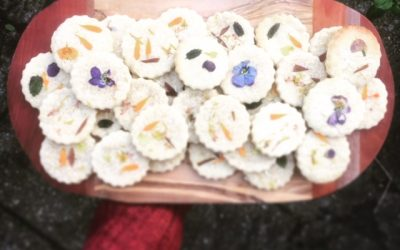 Edible flower biscuits – Spring